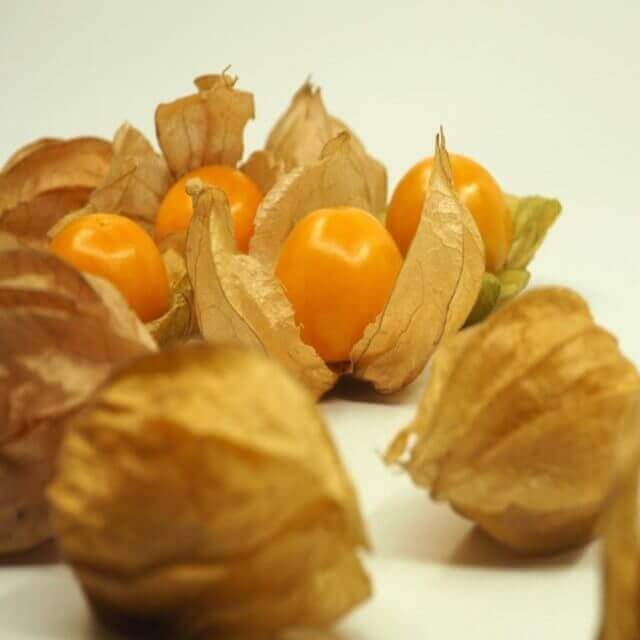 How to Grow,Harvest and Store Tomatillos: You should know
