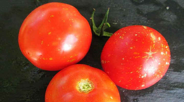White Spots on the Skin of Tomato